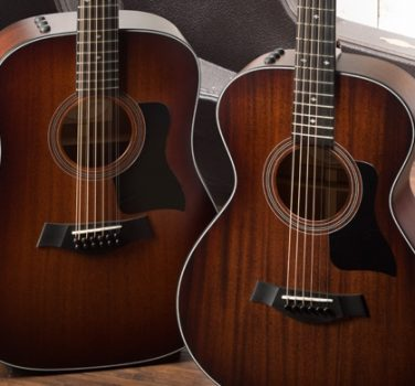 300 Series Guitars