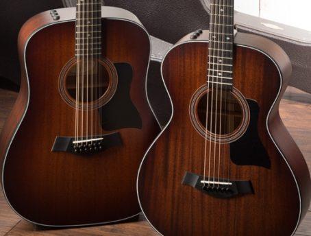 300 Series Guitars