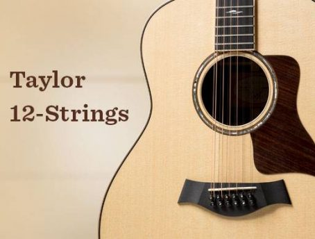 Taylor 12 String Guitar