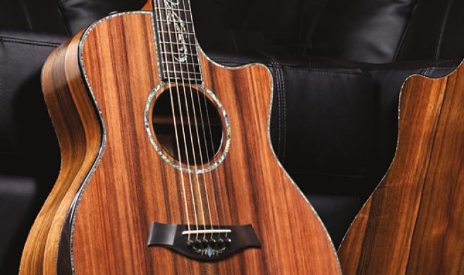 Ask Bob: Maple Soundboard? | Taylor Guitars