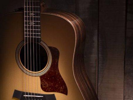 Dreadnought Guitar Shape