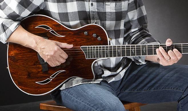 Guitars at the Taylor Road Shows