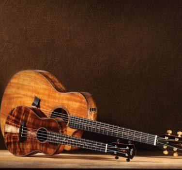 Builder's Reserve Guitars