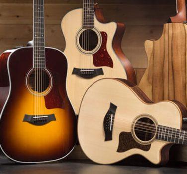 how to order a custom taylor guitar taylor guitars. Black Bedroom Furniture Sets. Home Design Ideas