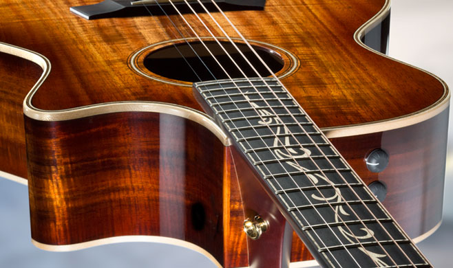 What's New in the Taylor Line for 2018 | Taylor Guitars