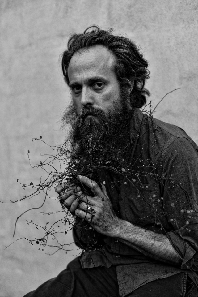Taylor Guitar Artist - Iron & Wine (Sam Beam)
