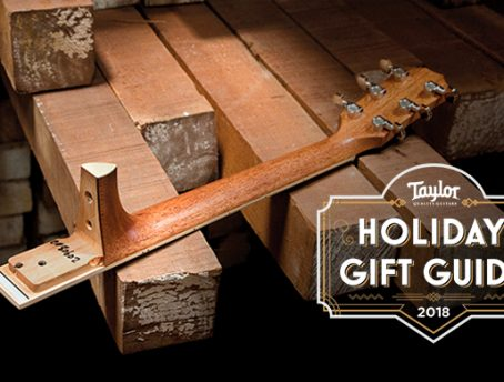 The Taylor Guitar Neck
