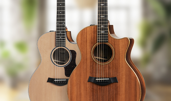 Taylor Limited Edition Guitars