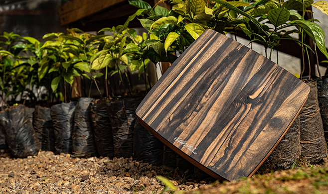 Bob Taylor Launches Stella Falone Ebony Kitchenware Line with Cutting Boards