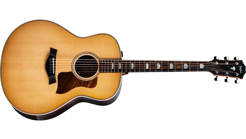 2020 for Taylor Guitars - 828e