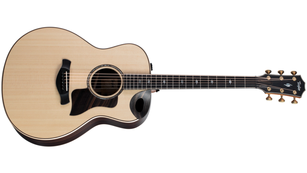 2020 for Taylor Guitars - 816ce