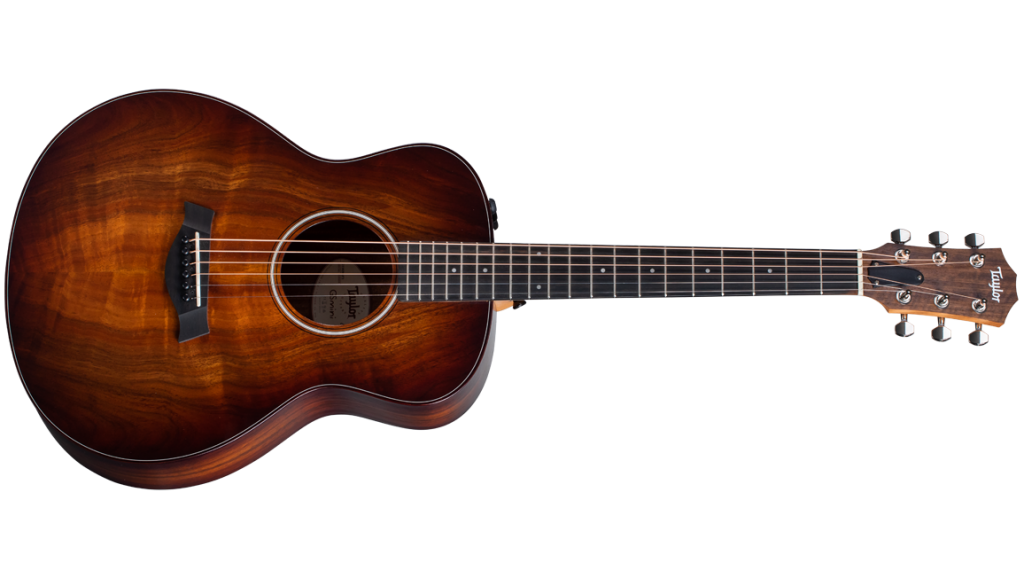 2020 for Taylor Guitars - GS Mini-e